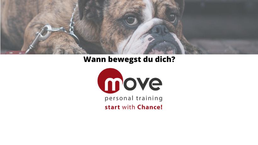 Deinen inneren Schweinehund überwinden mit Personaltrainer Bremen