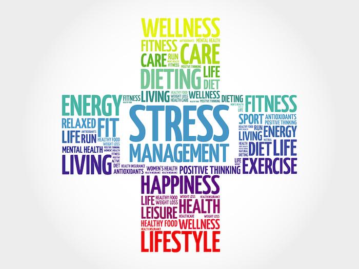 Anti Stress Coaching Bremen - Stressabbau ganzheitlich